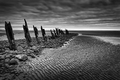 Walney Island Groynes (tony johnston Images) Tags: barrowinfurness cumbria evening other places roanhead seascape summer sunset uk walney groynes