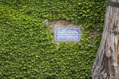 _MG_4417 (Jonatan Cunha) Tags: spain granada andaluzia alhambra alambra erasmus trip vacance travel