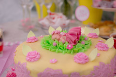 Baby Shower Cake (cuppyuppycake) Tags: baby shower cake sweet dessert decoration lace sugar flowers memories