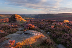 Over Owler Tor (Paul Newcombe) Tags: peakdistrict peaks derbyshire heather latesummer outdoors england paulnewcombephotography uk landscape bloom flower rocks sidelight sunset canon1635f4l derwentvalley hathersage gb britain overowlertor