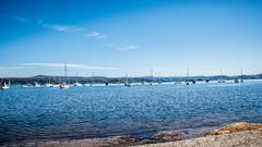 Saratoga Waterscape (Merrillie) Tags: nsw seascape saratoga centralcoastnsw landscape davistown australia boats marine waterscape nswcentralcoast centralcoast newsouthwales nature