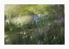 Greenspan (www.damientaylor.co.uk) Tags: greenspan japanese bridge gardens monet giverny france summer green impressionistic impression impressionism landscape painterly multipleexposure intentionalcameramovement me icm