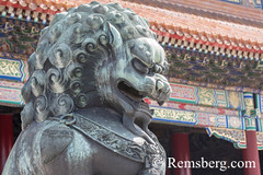 Beijing China - Detail of a bronze guardian lion statue (Shi) with the ornamented architecture of the Palace Museum in the background located in the Forbidden City. (Remsberg Photos) Tags: asia beijing eastasia china forbiddencity emporer dynasty ming tourists sightseeing palacemuseum history historical culture chineseculture forbidden traveldestinations internationallandmark architecture cityscape temple tiananmensquare monument meridiangate ornate colorful royalty bronzelion statue guardian shi foodog chn