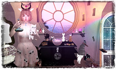 The Alchemist (orchid.bolissima) Tags: harrypotter harry potter cauldron halfdeer owl cat cats potion magic witch wizardry songeyes alchemy potions aisling dustbunny tlb floorplan pharmacist vco birdy barnesworthanubis sl secondlife slblog fashionblog secondlifeblog halloween apothecary