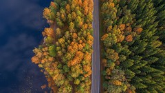 Divided colors (barenstaden) Tags: road water lake colorful colors autumn aerial forest