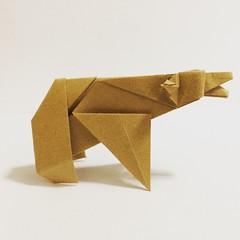 Origami Time! 40/53 Bear by Fumiaki Kawahata # # # # # # #papiroflexia #origami #paper #paperfolding #fold #foldedbyme #foldoftheday #instaorigami #Fall #ElParaiso #Sunday #September #25 #2016 #Caracas #Venezuela #chicoquick (chicoquick) Tags:       papiroflexia origami paper paperfolding fold foldedbyme foldoftheday instaorigami fall elparaiso sunday september 25 2016 caracas venezuela chicoquick