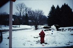 06 (AnkySoho) Tags: trees winter light snow cold tree film ice analog photoshop 35mm canon 50mm january adobe dxo canona1 35 vivitar lightroom filmpack 75205mm dxofilmpack lightroom4