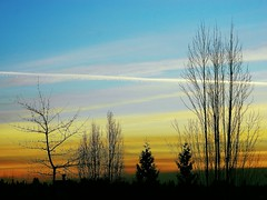 Vancouver, British Columbia (careth@2012) Tags: sunset chariotsofnaturelevel3 chariotsofnaturelevel1 chariotsofnaturelevel2