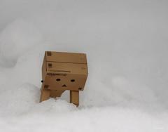 Playing in the Snow (Minit) Tags: snow miniature amazon mini danbo
