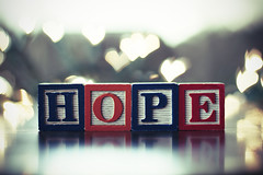 Hope [1/52] ({peace&love}) Tags: reflection field hope heart bokeh letter blocks shallow depth pinkparis1233