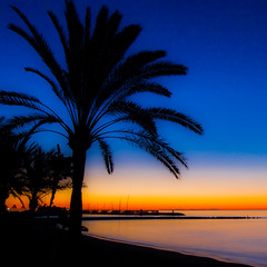 Marbella dawn (Steve-h) Tags: longexposure blue red sea vacation espaa orange holiday black art tourism beach nature yellow sunrise canon reflections palms eos dawn design seaside spain sand europa europe mediterranean zoom tripod eu wideangle tourists andalucia resort costadelsol recreation andalusia seashore aerlingus risingsun allrightsreserved marbella 253 velbon mirrorlockup canonef1635mmf28liiusm twosecondtimer yachtingharbour canoneos5dmkii canoneos5dmk2 bestcapturesaoi elitegalleryaoi velbonlightweighttripod steveh