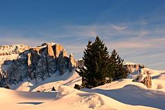 (claudiophoto) Tags: winter italy alps italia tramonto ngc alpi trentino dolomites italianalps dolomiti dolomiten blinkagain