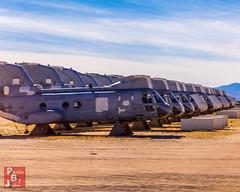 CH-46 (*PhotoByJohn*) Tags: arizona tucson helicopter 5d boneyard ch46 pimaairandspacemuseum airplanegraveyard ch46seaknight seaknight davismonthanairforcebase photobyjohn canon5dmkii 5dmkii