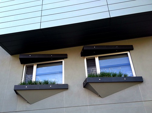 windows adelaide chives windowsill asymmetrical melbournestreet casement theen iphone4s