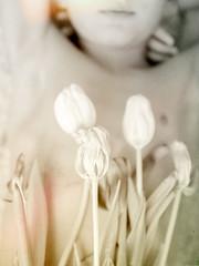 (Katta of Sweden) Tags: boy love hands tulips bright skin fingers bodylanguage valentine fotografi katta myeverything kattaofsweden katharinawestin