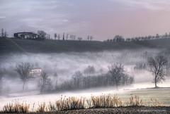 quiet misty... (Roberto Defilippi) Tags: winter fog landscape piemonte nebbia inverno hdr paesaggio rodeos niksoftware nikond300 photoshopcs6 photomatixpro42 rememberthatmomentlevel4 rememberthatmomentlevel1 rememberthatmomentlevel2 rememberthatmomentlevel3 rememberthatmomentlevel5 robertodefilippi
