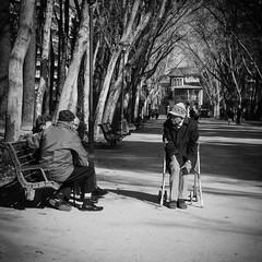 Soledad [Explore] (BuRegreg) Tags: street parque spain streetphotography explore streetphoto anciano albacete castillalamancha callejera 2013