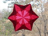 Ruby Red Star