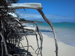 Kailua Beach Erosion (XJCreations) Tags: beach hawaii oahu erosion kailua