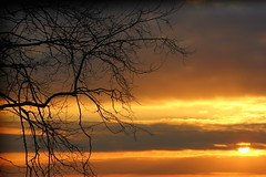 Week 9: Large (Harry Thomas Photography) Tags: sunset orange cloud sun tree silhouette set clouds canon happy eos big warm branch glow thomas iii nine large harry 9 romance massive week romantic 75300mm challenge 52 enourmous f456 550d blinkagain thomas100