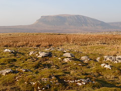pen y ghent landscape (shaunmedford) Tags: winter mountain stone wall pen landscape march three y yorkshire dry limestone peaks ghent dales