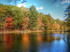 Harold Parker State Park (Littlerailroader) Tags: autumn fall day seasons massachusetts newengland andover hdr autumninnewengland haroldparkerstateforest andovermassachusetts pwfall pwpartlycloudy