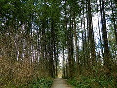 Green Timbers Park (careth@2012) Tags: scenery chariotsofnaturelevel3 chariotsofnaturelevel1 chariotsofnaturelevel2