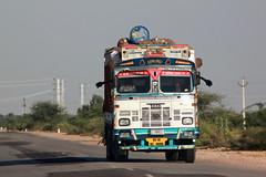 India // Rajasthan 2012-11-09