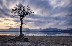 Milarrochy (Mandlenkhosi) Tags: sunset reflection landscape scotland lochlomond sigma1020mm milarrochybay nikond5100
