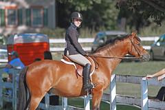 IMG_2605 (SJH Foto) Tags: horse show hunter class rider ribbon award teen teenagers tweens girls