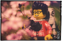 Among flowers (Priovit70) Tags: lego minifig sigfig camera photographing flowers pink macro olympuspenepl7
