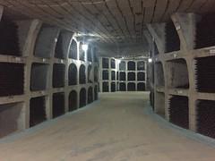 vinkælderen under Milestii Mici