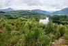 Loch Ard (RiserDog) Tags: lochard kinlochard trossachs stirlingdistrict scotland benlomond