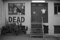 DEAD Store (AnniversaryRoad) Tags: 135 35mm 50mm bw deadstore europe ft2 iceland nikkormat nikon nipponkogaku reykjavik analog animalhead black blackandwhite bush dead door film glass monochrome odd oldschool outdoor outside plant stairs strange street weird white window
