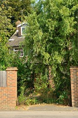 The House on Hoath Lane (Chrissie L - doesn't do Photoshop) Tags: capturenx2 nikond700 kent gb