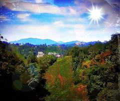 https://foursquare.com/v/frasers-hill/4c15e15ea5eb76b0f8fbc3b7 #outdoor #holiday  #travel #trip #green #hill #Asia #Malaysia #pahang #fraserhill #bukitfraser # # # # # # # # # # (soonlung81) Tags: outdoor holiday travel trip green hill asia malaysia pahang fraserhill bukitfraser
