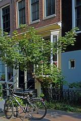 brave (Elly Snel) Tags: amsterdam stad city street straat boom tree huizen houses bike fiets ansh scavenger5
