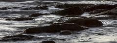 (LorenzoRufusTestai) Tags: wavy way wave rocks mare moto ondoso toscana sunset tramonto landscape luce light tuscany sanvincenzo seaside sony a6000 nikkorlens nikkor oldlens silky drop wavyway italy