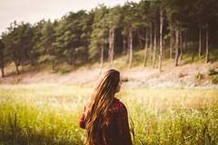Wander (Aletta.) Tags: matte forest wander green fall autumn