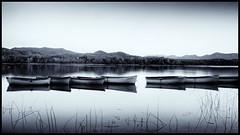 Boats on Estany de Banyoles (PascallacsaP) Tags: banyoles estanydebanyoles catalonia catalunya cataluña spain españa lake water longexposure rowingboats hills forest sky pladelestany reflection pirineos pyrenees bw blackandwhite