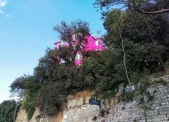 Just Istanbul (tolgamert3485) Tags: istanbul manzara great landscape house ev pembe pink bosphorus nature aa htc m9 sky crop mm kadraj angle awesome love