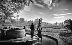 Getting Up (Padmanabhan Rangarajan) Tags: araku valley india rural scenes tribals villagers vishakapatnam vizag