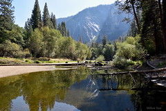 [Silent Reflection of the Merced River] (miltonsun) Tags: yosemite california nationalpark mercedriver ngc westcoast landscape mountains reflection nature river