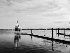 Ready to Cast Off (votsek) Tags: 2016 mountvernontrail hipstamatic jacklondon blackeysxf hobie16 hobiecat16 sailboat potomac potomacriver catamaran