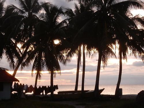 Coastal Silhouettes