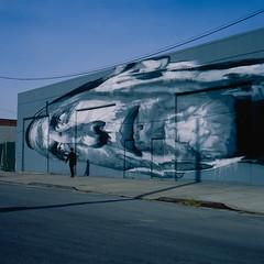 ECB:  THE ONLY REALITY IS NOW (Barry Yanowitz) Tags: nyc newyorkcity streetart ny newyork art 6x6 film brooklyn mediumformat graffiti fuji 120film scanned filmcamera rwk bushwick ecb nycity robotswillkill fujivelvia50 718 veng colorfilm rolleiflexmxevs