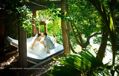 Seuls au monde (Pixelinthebox) Tags: wedding love nature kiss couple jungle mariage mauritius seul ilemaurice pixelinthebox julienvenner weddingphotographermauritius photographemariageilemaurice