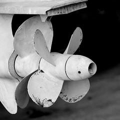 [AA0362]* 2013/01/28_002 (sdb66) Tags: bw italy italia day outdoor pe abruzzo pescara nikond200 nikkorafsdxvr18200mmf3556gifed rawnef