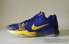 Nike Zoom Kobe V : Five Rings (ITSandrewwww) Tags: pickup sneakers nike kobe kicks sole lakers footage kobebryant solecollector fiverings kb24 sneakernews kobev kobe5 thecoolshoeshine
