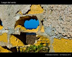 585_D7B0017_bis_Terrasini
